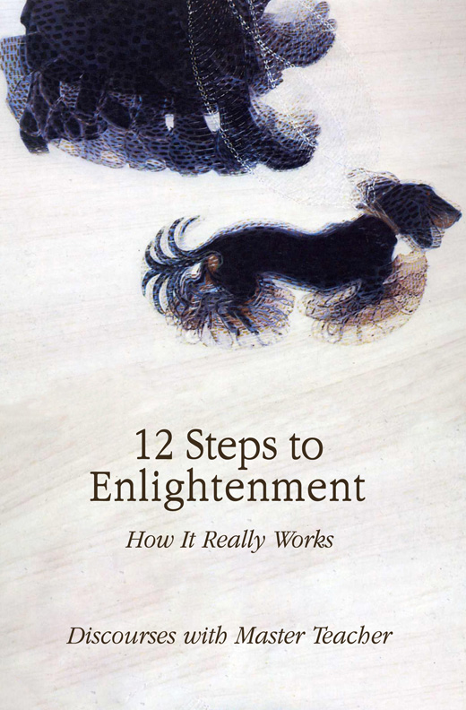 12 Steps to Enlightenment - How It Really Works